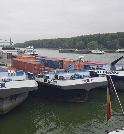 3 Schiffe in Bonn.